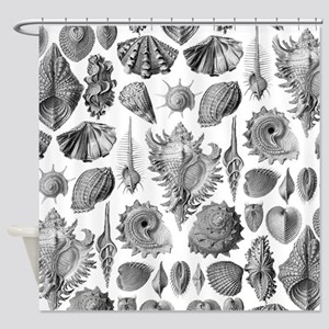 Vintage Seashells Shower Curtain