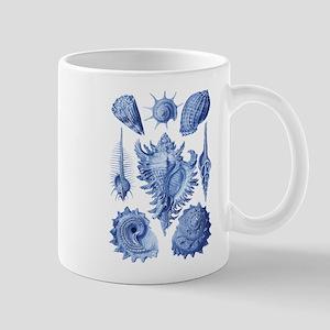 Vintage Seashells Mugs