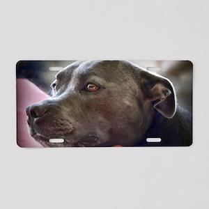 Loving Pitbull Eyes Aluminum License Plate