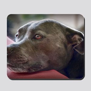 Loving Pitbull Eyes Mousepad