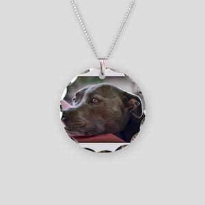 Loving Pitbull Eyes Necklace Circle Charm
