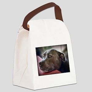 Loving Pitbull Eyes Canvas Lunch Bag