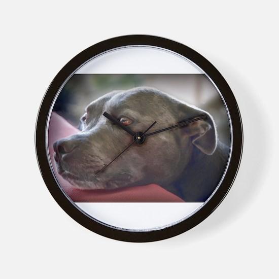 Loving Pitbull Eyes Wall Clock
