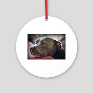 Loving Pitbull Eyes Ornament (Round)