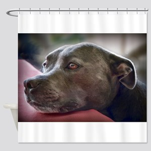 Loving Pitbull Eyes Shower Curtain