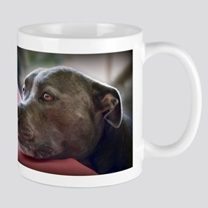 Loving Pitbull Eyes Mugs