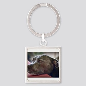 Loving Pitbull Eyes Keychains