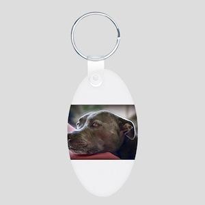 Loving Pitbull Eyes Keychains
