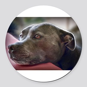 Loving Pitbull Eyes Round Car Magnet