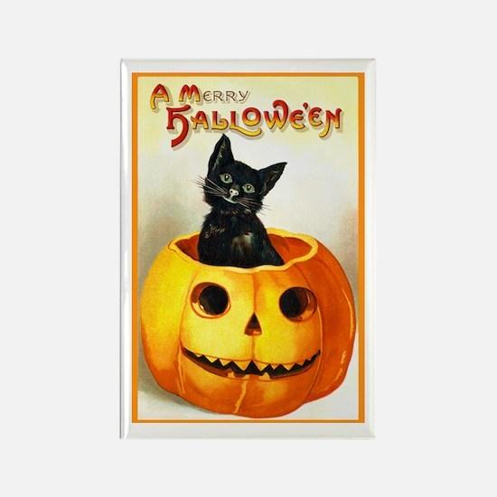 Jackolantern Black Cat Rectangle Magnet
