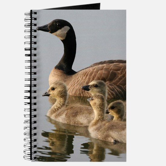 Mother Goose and Her Goslings Journal