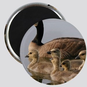 Mother Goose and Her Goslings Magnets