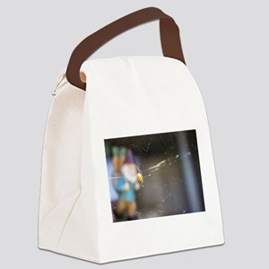 Spider Gnome Canvas Lunch Bag