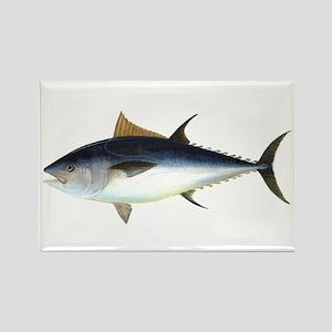 Bluefin Tuna illustration Magnets