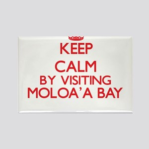 Keep calm by visiting Moloa'A Bay Hawaii Magnets