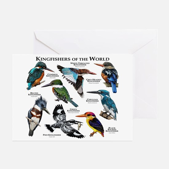 Kingfishers of the World Greeting Cards (Pk of 10)
