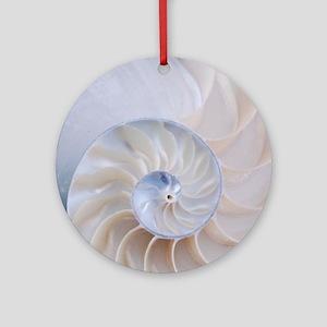 Nautilus Ornament (Round)