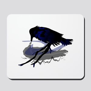 Raven drinking water with his shadow Mousepad
