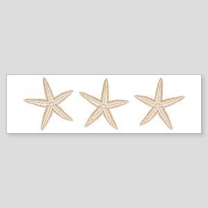Sand Starfish Sticker (Bumper)