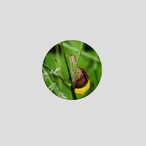 Happy Snail Mini Button