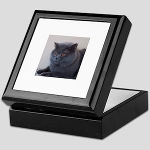 blue British Shorthair cat Keepsake Box