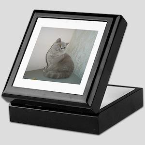 British Shorthair kitten Keepsake Box
