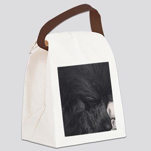 Sleeping Beauty Canvas Lunch Bag