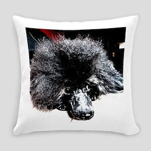 Black poodle Ali's Everyday Pillow