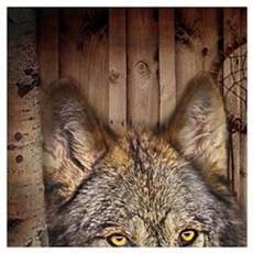vintage Americana wild wolf  Poster