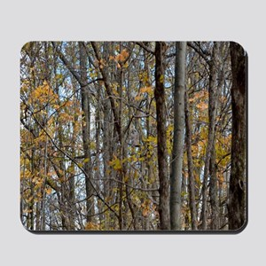 forest trees Camo Camouflage  Mousepad