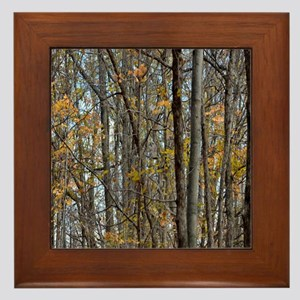 forest trees Camo Camouflage  Framed Tile