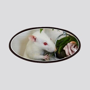 White Pet Rat with Rose Patch