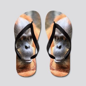 Oranguan Flip Flops