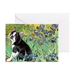 Irises & Boston Ter Greeting Cards (Pk of 20)