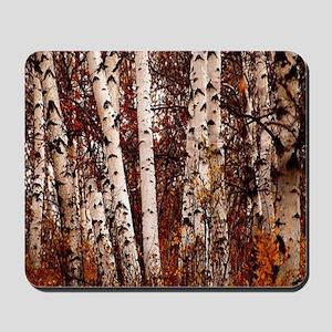 fall landscape birch tree Mousepad