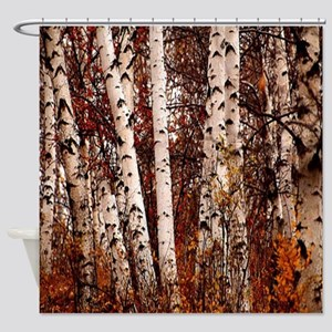 fall landscape birch tree Shower Curtain
