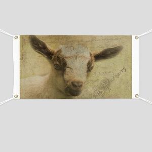 Baby Goat Socke Banner