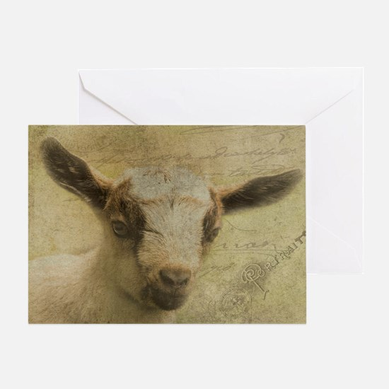 Baby Goat Socke Greeting Cards