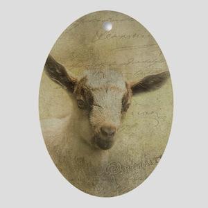 Baby Goat Socke Ornament (Oval)