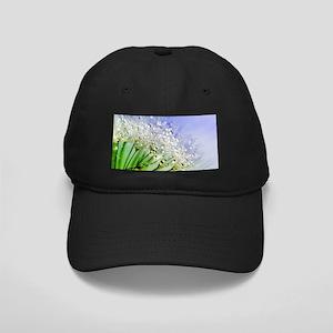 Sparkling Dandelion Black Cap