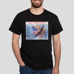 American Eagle Dark T-Shirt