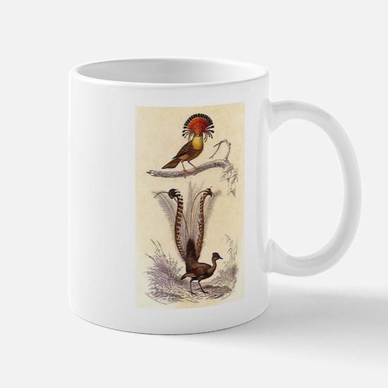 Lyrebird Mug
