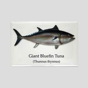 Bluefin Tuna Rectangle Magnet