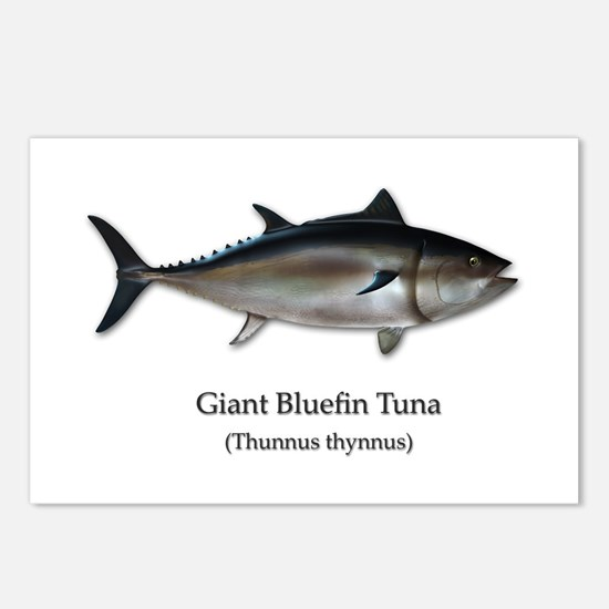 Bluefin Tuna Postcards (Package of 8)