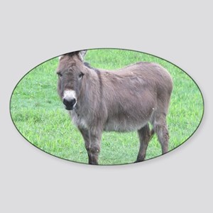 Merlin the Mini Donk Sticker (Oval)