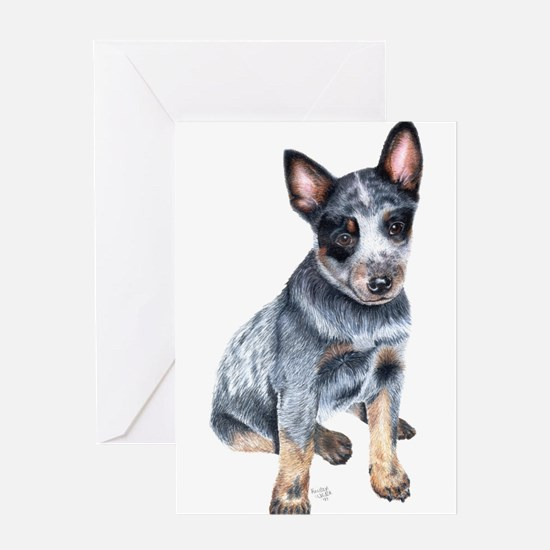 foster Greeting Cards
