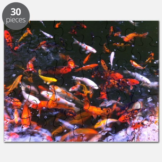 Dallas Koi Puzzle