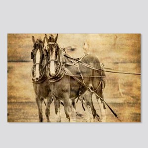 western country farm hors Postcards (Package of 8)