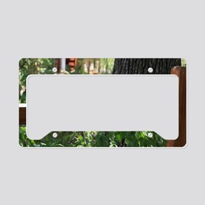 Sunbathing License Plate Holder