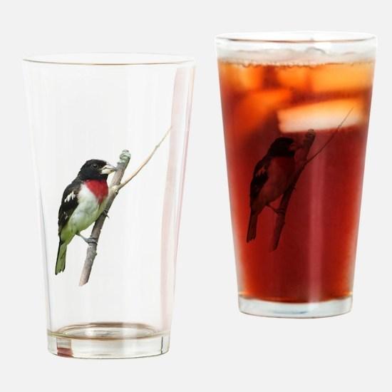 Rose-breasted grosbeak Drinking Glass
